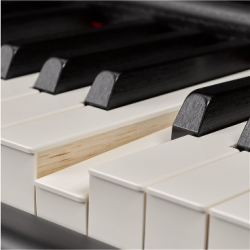 Yamaha Piano Electrónico P-515